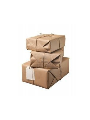Parcel UPS Standard, up to 2kg