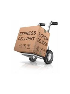 Parcel UPS Express Saver, up to 1kg