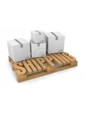 Parcel Special delivery